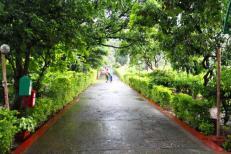 parmarth-niketan-ashram 1