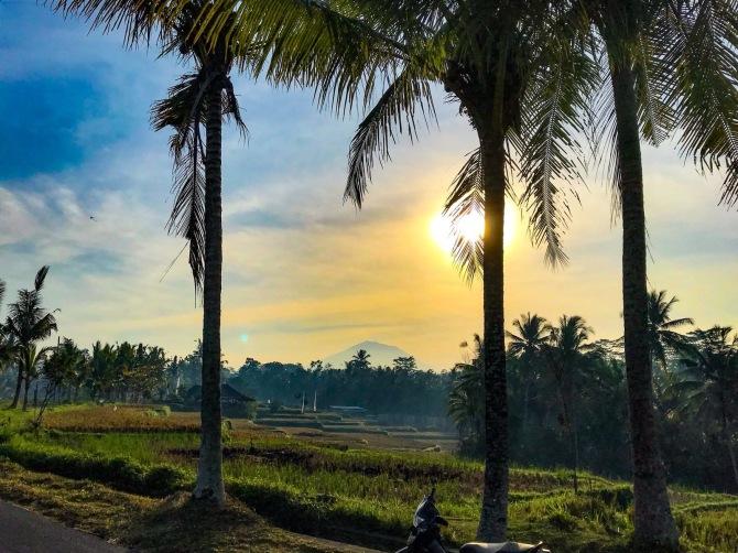 Writing-Retreat-Bali